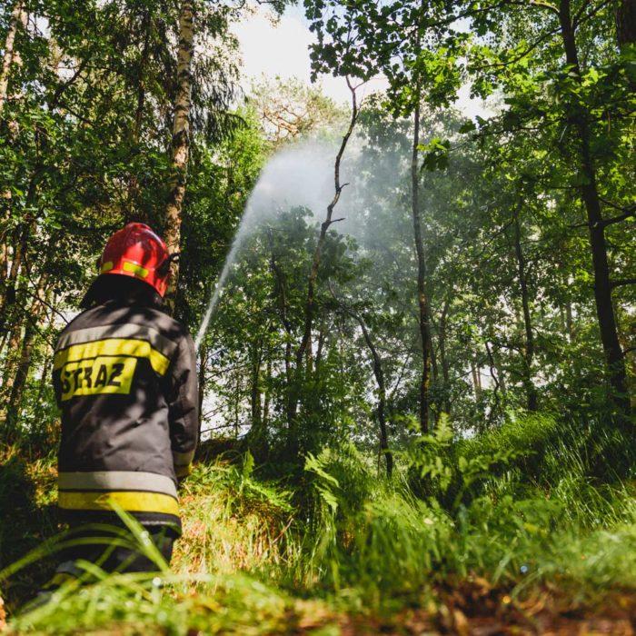 Ćwiczenia Państwowej Straży Pożarnej - Lasy 2018
